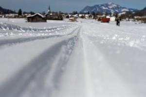 trasy do nart biegowych