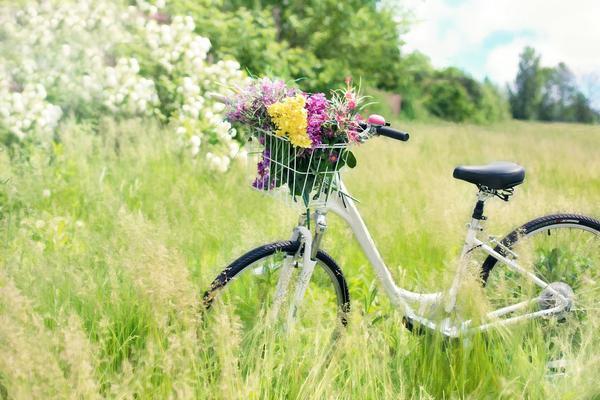 dobre damskie rowery kross
