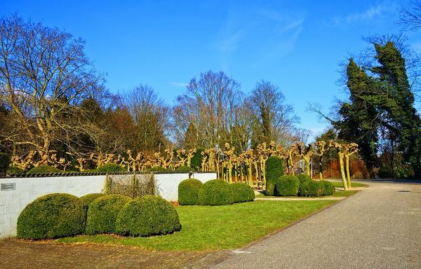 Jak stworzyć idealny ogród?