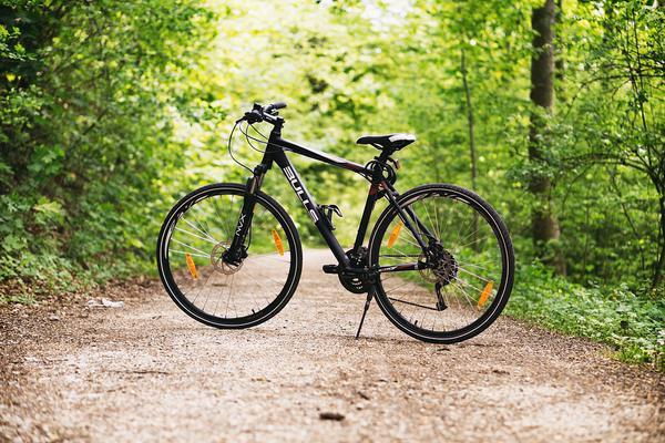 Fakty na temat wózków rowerowych
